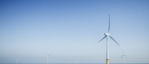 Windenergie: Energiefirmen wollen Auswirkungen von Offshore-Windparks untersuchen